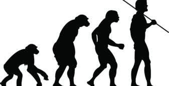 Is Evolution A Theory in Crisis?